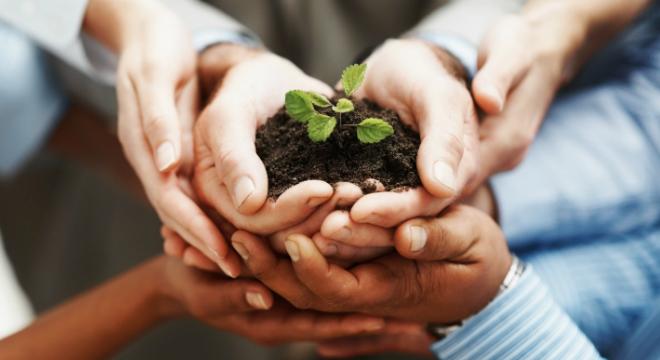 Negócio-Sustentável